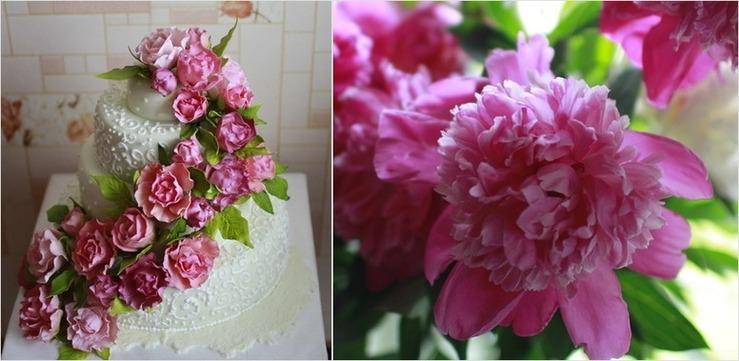 красивый большой белый торт с розовыми цветами пионами