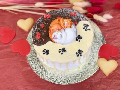 """Торт """"влюбленные котики"""""""