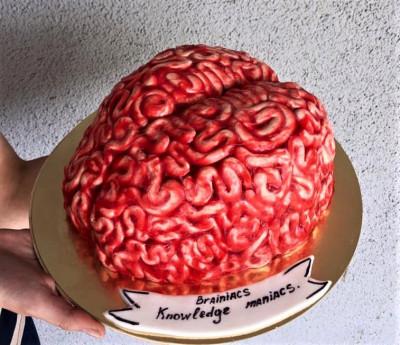 """3D торт """"Мозг"""""""