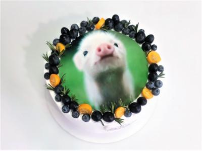 Торт с фотопечатью и ягодами